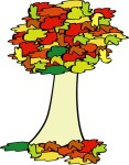 fall_coloured_tree_geral_01
